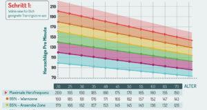 optimale pulsfrequenz zur fettverbrennung